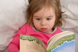 6 Favorite Bedtime Books: The Toddler Edition