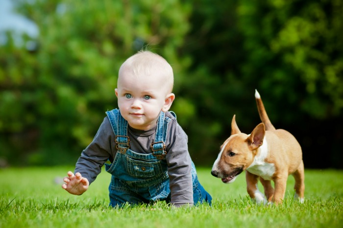 13 ways your baby is like a puppy momsanity