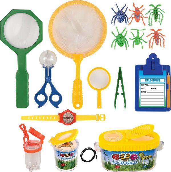 Bug collecting set for your camping staycation