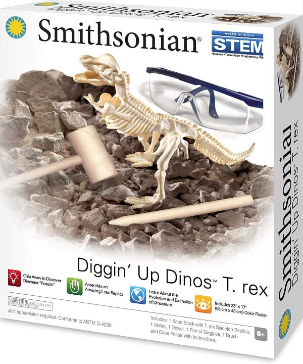 Smithsonian Skeleton - Momsanity